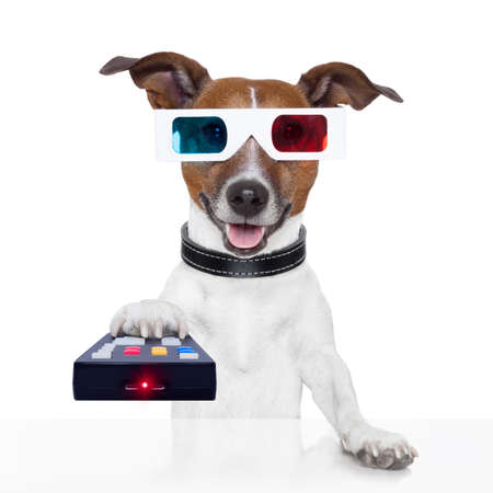 watch video: remote control 3d glasses tv movie dog Stock Photo