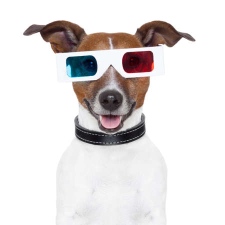 funny glasses: 3d  glasses movie cinema dog Stock Photo