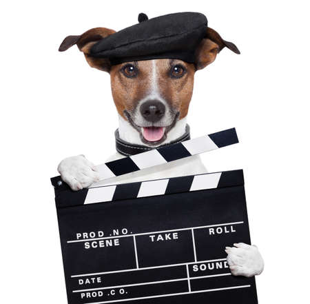watch video: movie clapper board director dog
