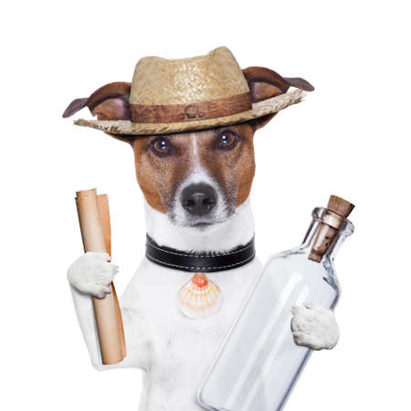 message in a bottle dog with hat Stock Photo - 16062381