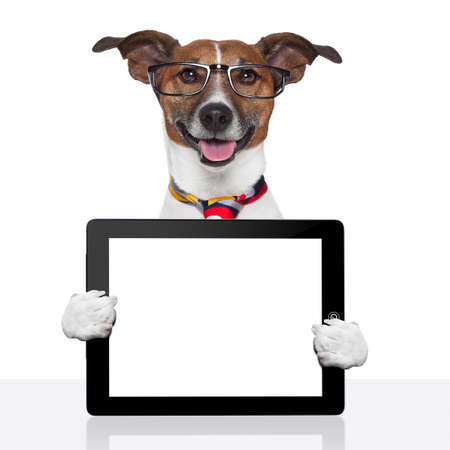 jokes: business dog tablet pc ebook computer notebook Stock Photo