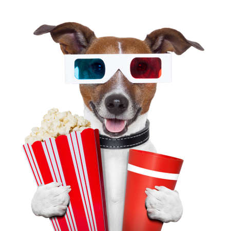 3d glasses movie popcorn dog watching a film Stock Photo - 16062387