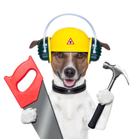 constructor: handyman and craftsman dog with hammer and saw