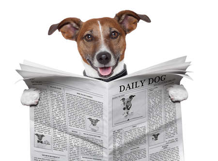 dog reading and holding a  newspaper photo