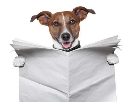 dog reading and holding a blank newspaper Stock Photo - 16401590