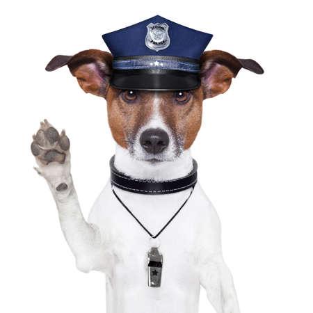 perro policia: perro policía pidiendo parar con tapa