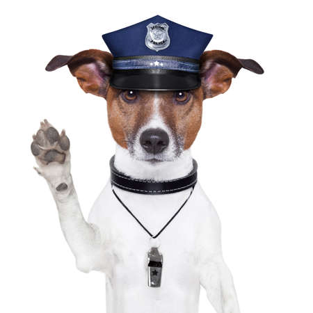 arrested: police dog asking to stop with cap Stock Photo