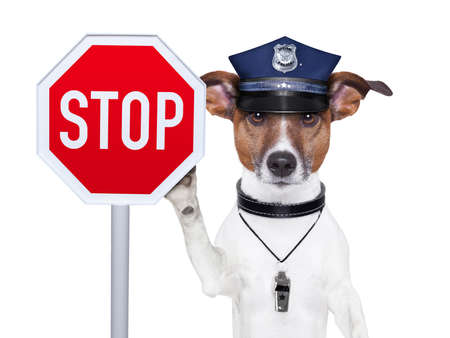 terrier: police dog with a street stop sign