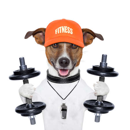 bodybuilder training: dog training with dumbbells and a whistle Stock Photo