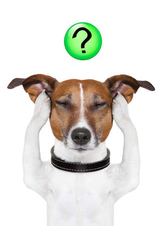 dog thinking with a question mark on top photo