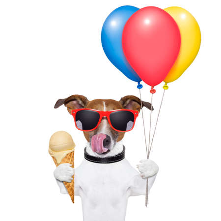 dog licking with ice cream and balloons photo
