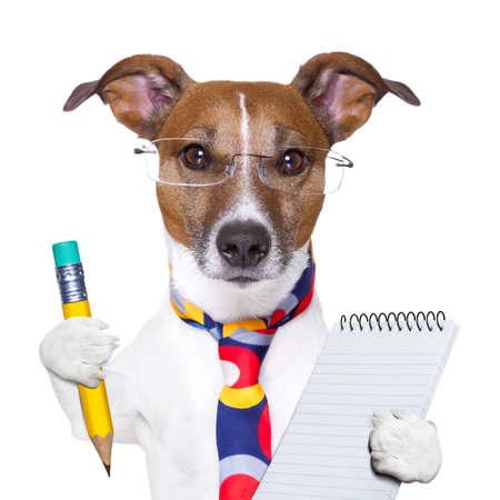 matematik: kalem ve not defteri ile muhasebeci köpek Stok Fotoğraf