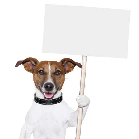 perro sosteniendo un cartel vacío y lamiendo cartel vacío y sonriente