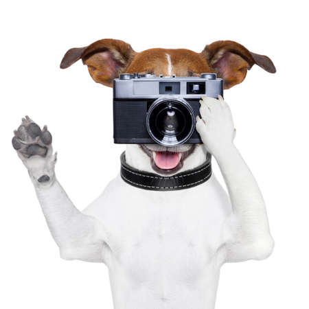 camera lens: dog taking a photo with an old camera