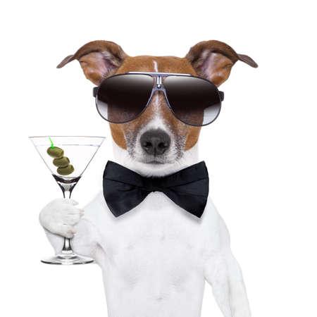 felicitaciones: perro fiesta brindando con una copa de martini con aceitunas Foto de archivo