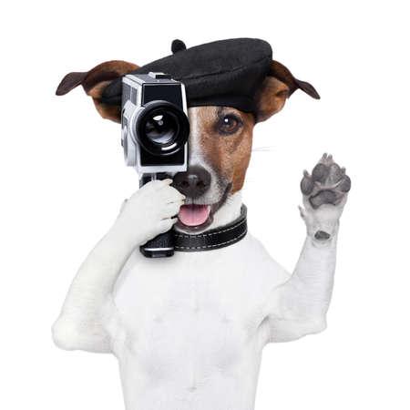 při pohledu na fotoaparát: filmový režisér pes s vintage kamerou