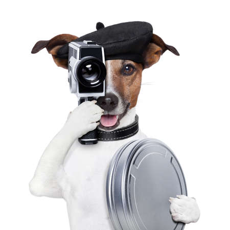 show dog: movie director dog with a vintage camera