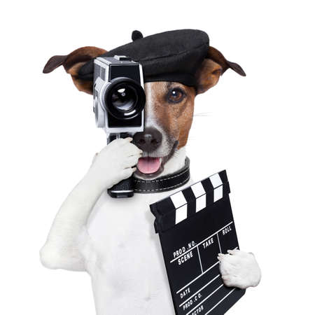 movie director dog with a vintage camera Stock Photo - 17882441
