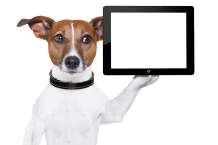 dog holding a  blank tablet pc on paw photo