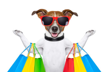 shopping dog  photo