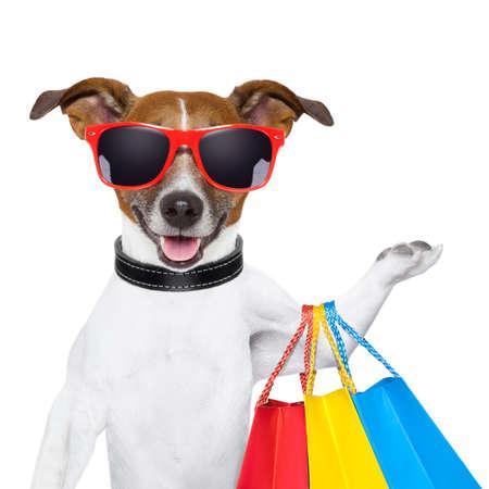 grappige hond met boodschappentassen en glazen Stockfoto