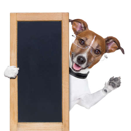 dog behind a blackboard banner waving