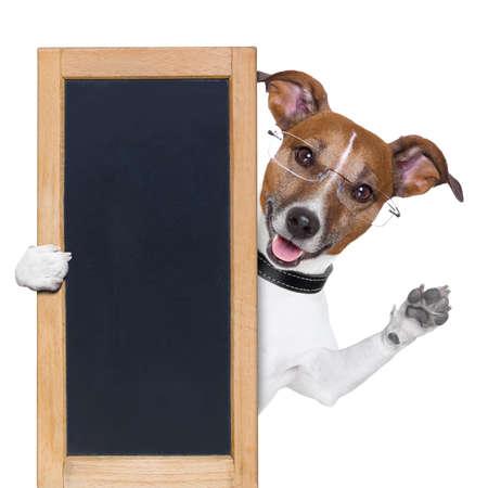 board: dog behind a blackboard banner waving