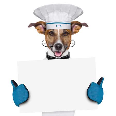 perro comiendo: un perro cocinero que sostiene un cartel vac�o