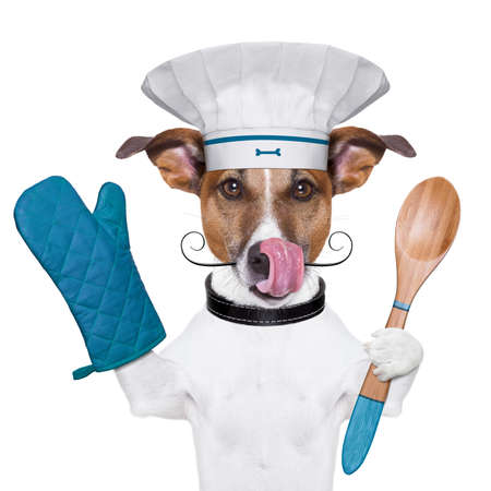 a cook dog holding an cooking spoon and licking photo