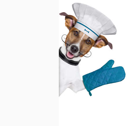 show dog: dog holding an empty placard and waving Stock Photo