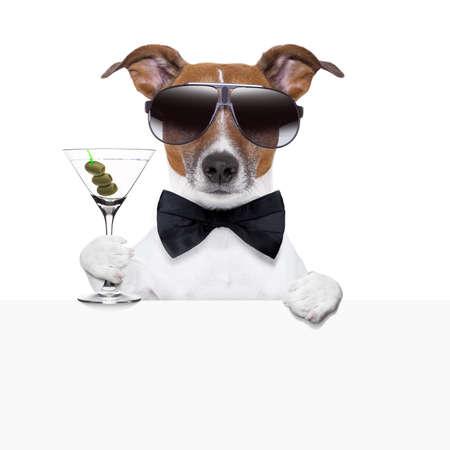 felicitaciones: cóctel divertido perro detrás de una bandera blanca Foto de archivo