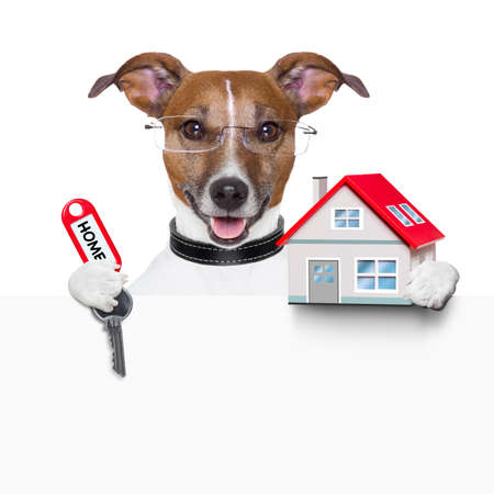 house pet: dog behind an empty placard with a small house and  home keys Stock Photo