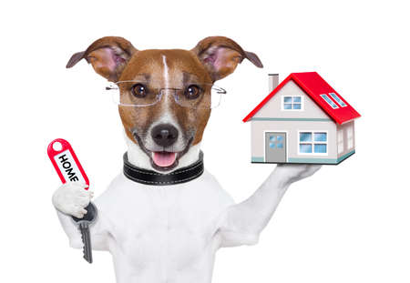 dog holding a small house and a red key photo