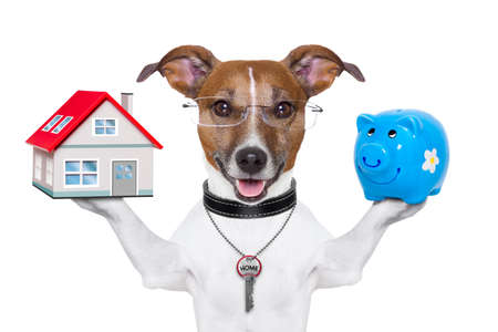 dog holding a small house and piggy bank