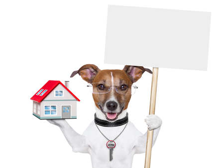 house pet: dog holding an empty placard with a house and a key