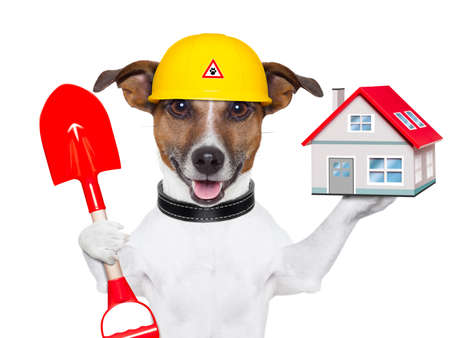 dog holding a small house and a red shovel photo