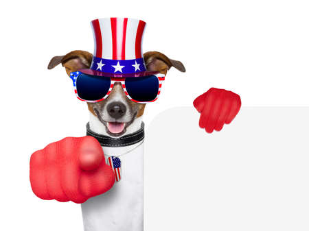 american dog pointing with  big finger at you photo