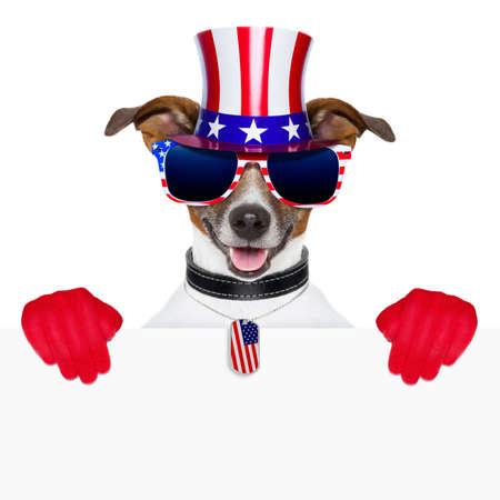 july: american dog with red gloves behind banner