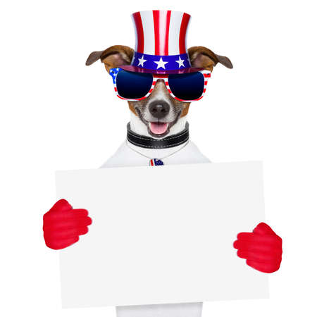 american dog with red gloves behind banner Stock Photo - 19405277