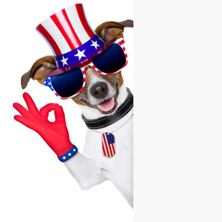 pride american dog with  ok fingers behind banner photo