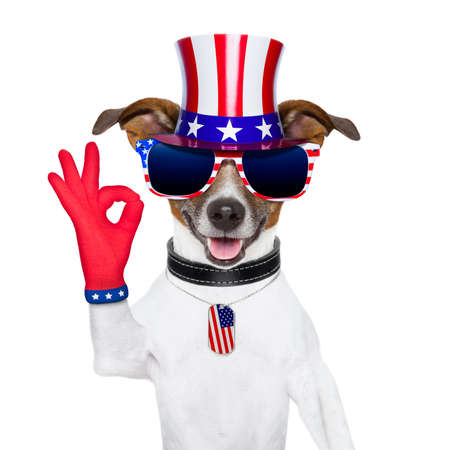 pride american dog with red ok fingers photo