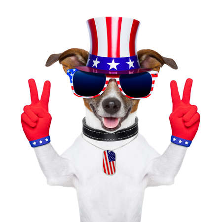 july: american peace and victory fingers dog with red gloves and glasses