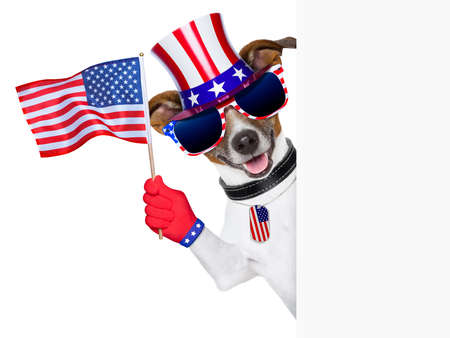 juli: trots amerikaanse hond zwaaien ons vlag achter banner Stockfoto