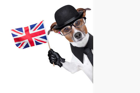 british dog with black bowler hat and black suit waving a flag photo