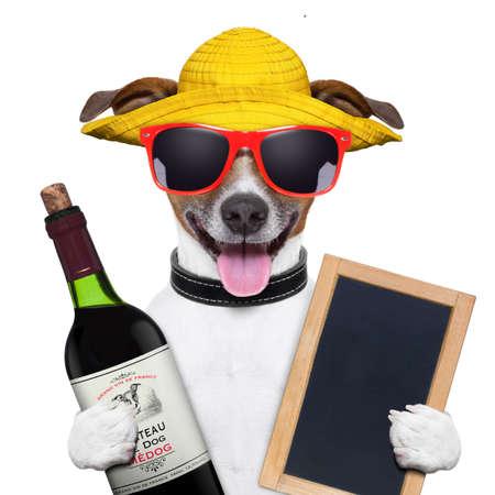 dieren: zomer hond met een fles wijn en blackboard