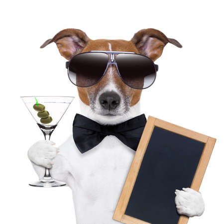 jokes: party dog toasting with a martini glass with olives