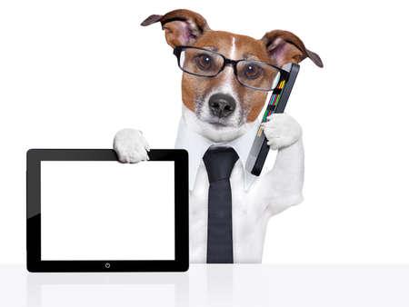zakelijke hond met een stropdas, bril, tablet pc en smartphone Stockfoto