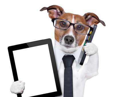business: affärer hund med en slips, glasögon, Tablet PC och smartphone hund med smartphone och en tablet pc Stockfoto