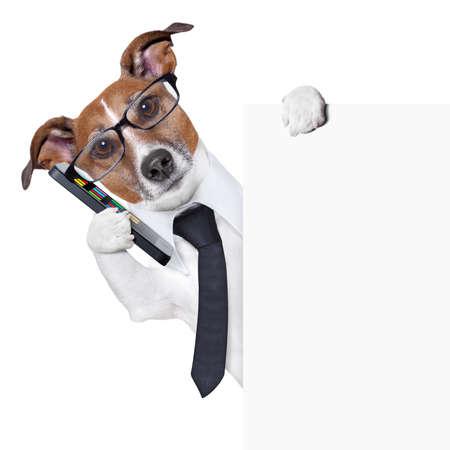grappige honden: smartphone hond achter een lege pagina te luisteren Stockfoto