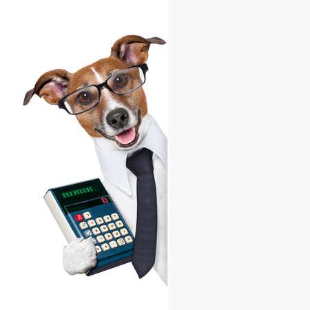 factura: contador perro detr�s de la p�gina en blanco con un traje